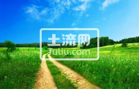 曲靖陆良县40亩果园出租